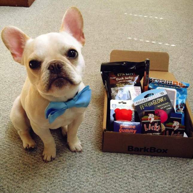 Get $10 off any BarkBox subscription and support  AZ Happy Tails! For every coupon used on BarkBox.com, our rescue will get a $10 donation from BarkBox. Be sure to use our special promo code: AZHAPPYBBX1.